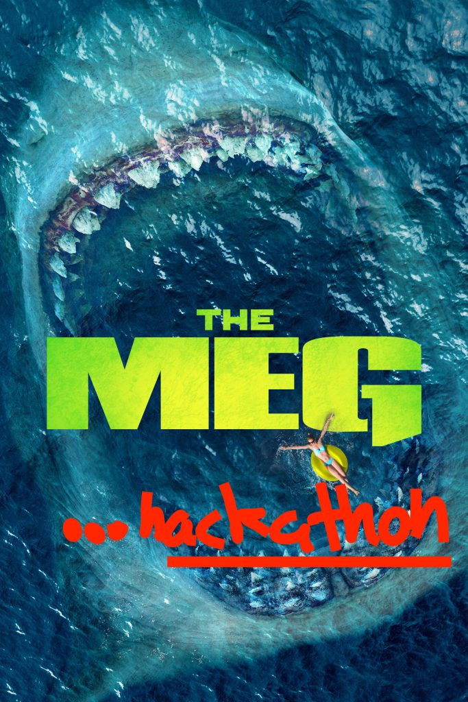 The MEG hackathon